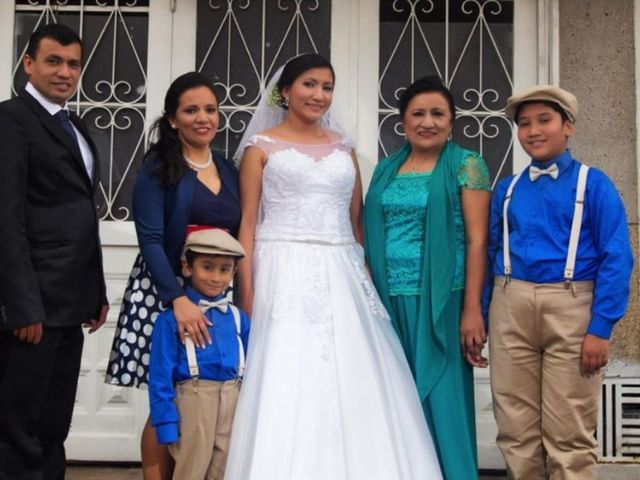 El matrimonio de Aljandro  y Daniela  en Bogotá, Bogotá DC 31