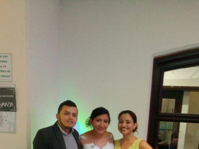 El matrimonio de Aljandro  y Daniela  en Bogotá, Bogotá DC 48