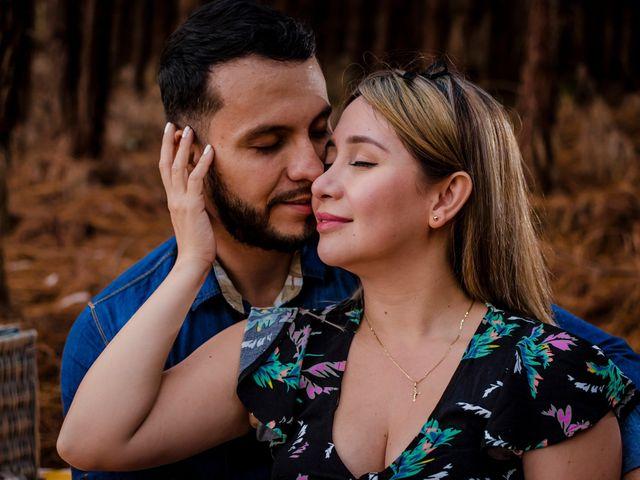 El matrimonio de Paola y Alexis en Cali, Valle del Cauca 6
