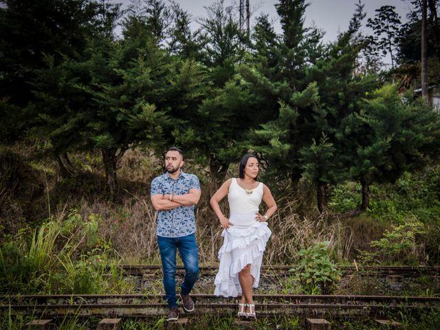 El matrimonio de Carlos y Vanessa en Cali, Valle del Cauca 11