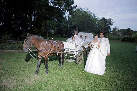 El matrimonio de Alberto y Diana en Jamundí, Valle del Cauca 61
