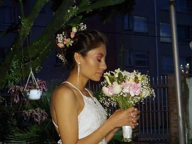 El matrimonio de Sergio  y Andrea  en Bogotá, Bogotá DC 5