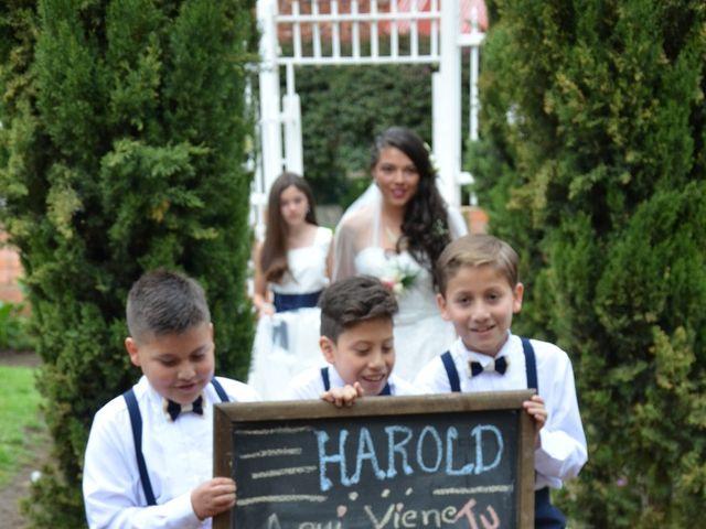 El matrimonio de Harold y Alejandra en Bogotá, Bogotá DC 6