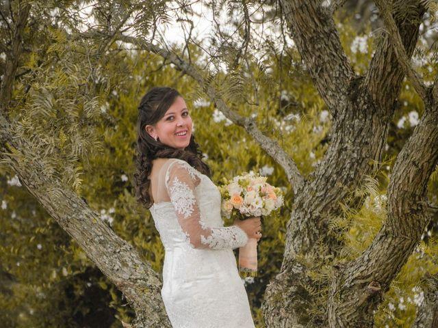 El matrimonio de LuisFe y Diana  en Cota, Cundinamarca 12