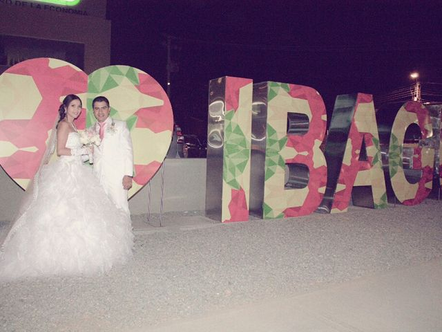El matrimonio de Mario y Jessi en Ibagué, Tolima 21