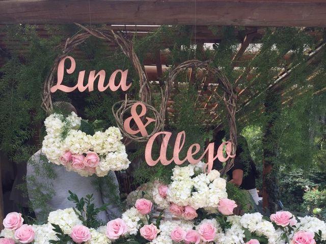 El matrimonio de Alejandro y Lina en Medellín, Antioquia 3