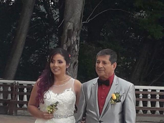 El matrimonio de Alfredo  y Viviana  en Bogotá, Bogotá DC 11
