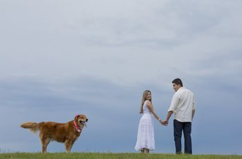 La mascota en tu nueva vida de casada