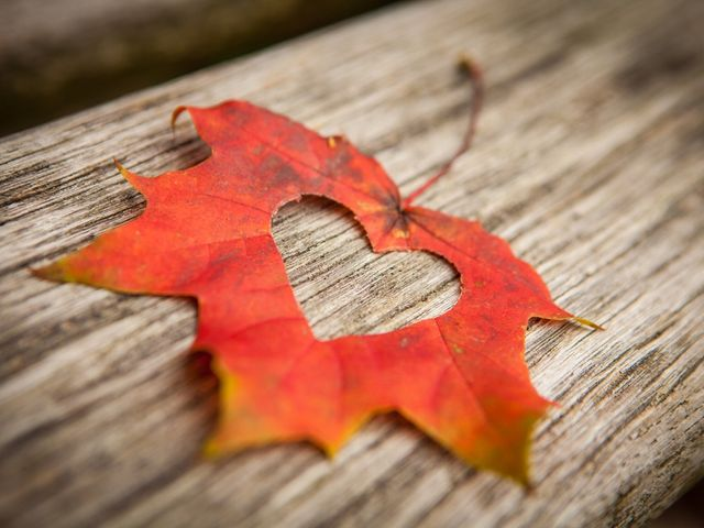 10 maneras de decorar tu matrimonio inspiradas en el otoño