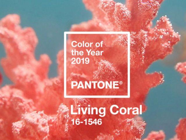Pantone 2019: Coral, el color del año ya está aquí