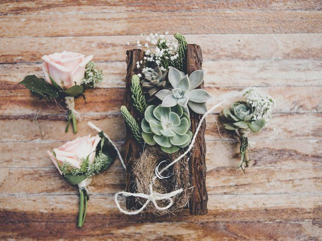 Plantas crasas o suculentas: 20 propuestas para esta nueva tendencia en decoración floral