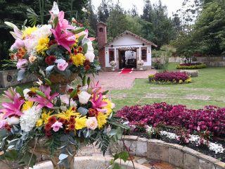 Hacienda Los Nogales 1