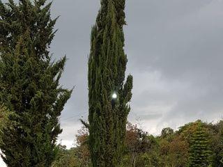 Los Raques de Bella Luna - Classic Eventos Santhodomingo 4
