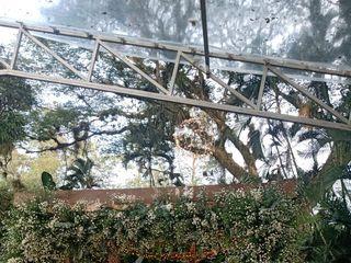 Hacienda El Tronio 1