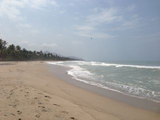 Playa Mandala 2