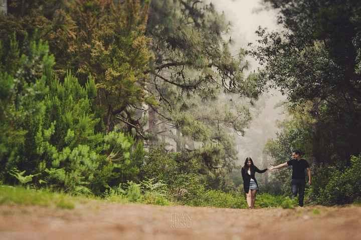 5. En el bosque