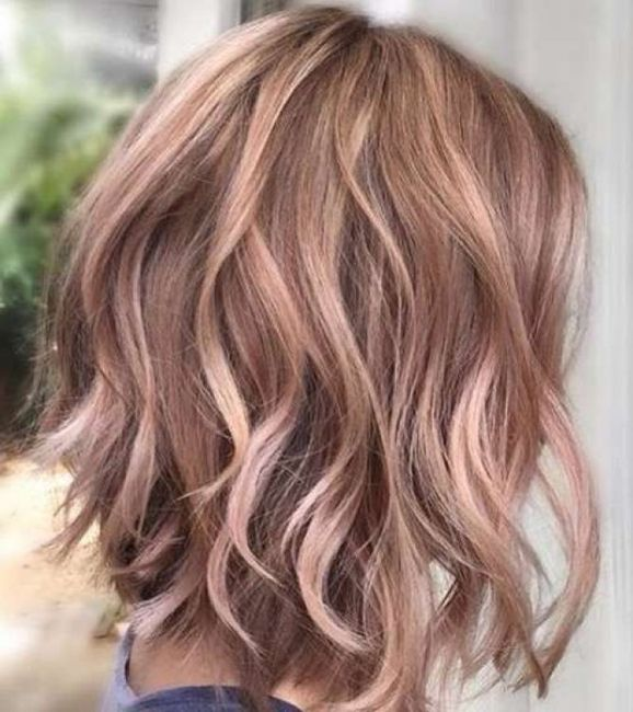 Colores de pelo corto 2019