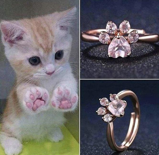 A mi que me den un anillo de compromiso así, ¿Y a ti? 1