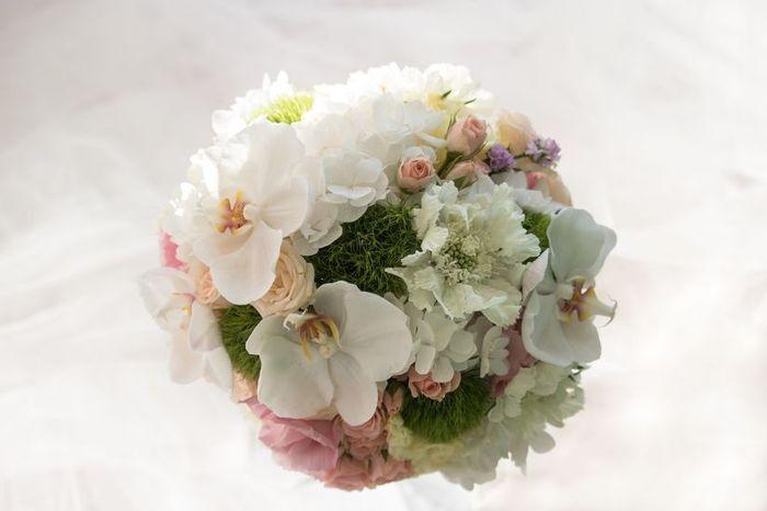 ¿Qué flores te gustan más? 4