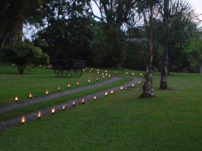 Pista de baile for Antorchas jardin