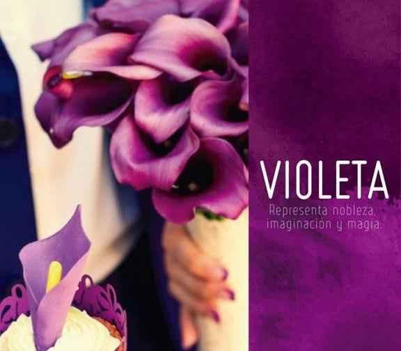 2. Violeta.