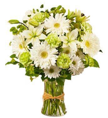 Necesito un ramo de flores blancas!!!! 11