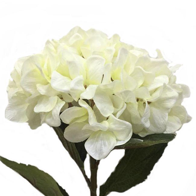 Necesito un ramo de flores blancas!!!! - 4