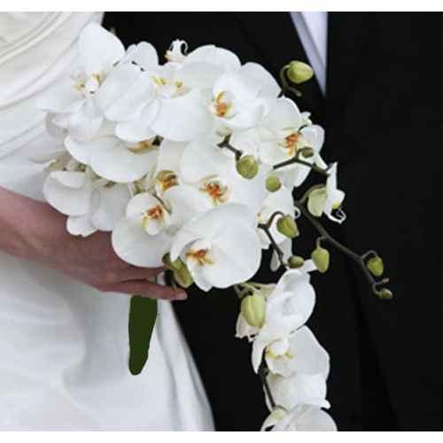 Necesito un ramo de flores blancas!!!! - 1
