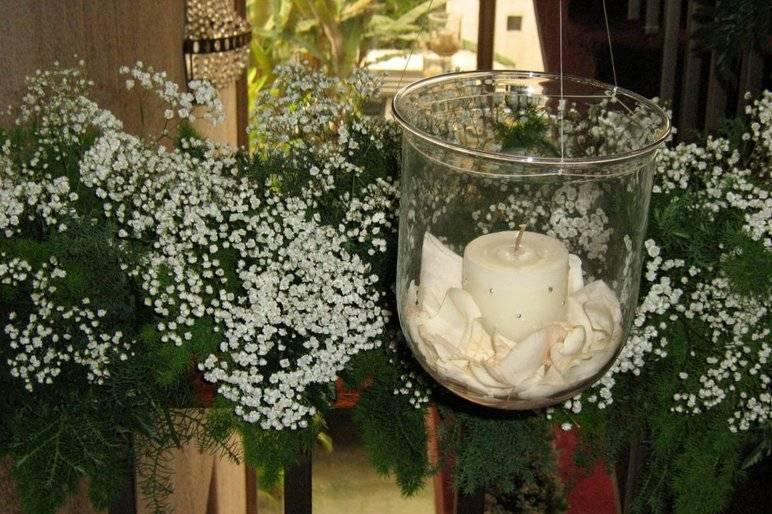 Flora Santa Cecilia